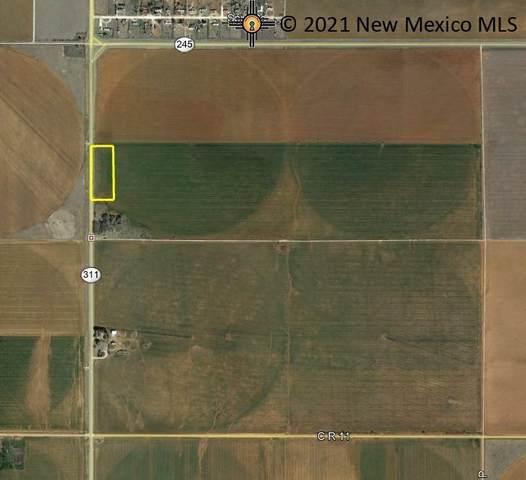 1160 Sr 311, Clovis, NM 88101 (MLS #20213554) :: The Bridges Team with Keller Williams Realty