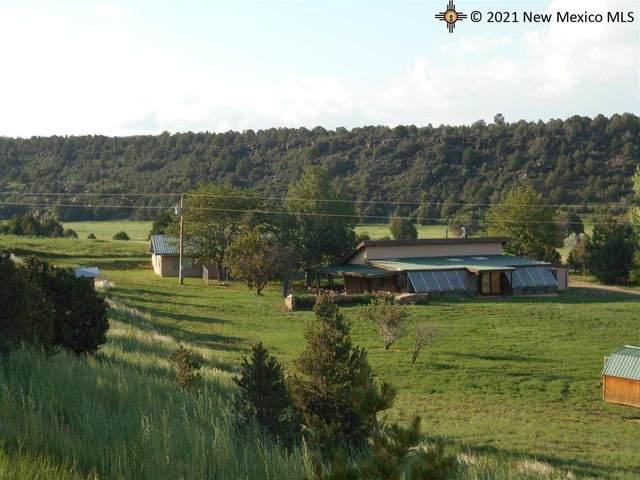 2056 State Hwy 120, Ocate, NM 87734 (MLS #20213863) :: The Bridges Team with Keller Williams Realty