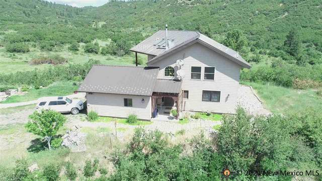 24 Private Drive 1797, Chama, NM 87520 (MLS #20214023) :: The Bridges Team with Keller Williams Realty