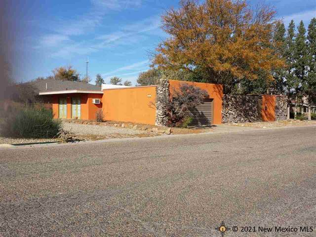 1300 W 17th Lane, Portales, NM 88130 (MLS #20214107) :: Rafter Cross Realty