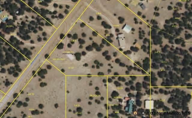 14 Mesa Verde Drive, Quemado, NM 87829 (MLS #20214114) :: The Bridges Team with Keller Williams Realty