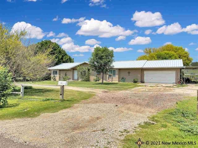 3019 E Bannock, Lovington, NM 88260 (MLS #20214218) :: Rafter Cross Realty