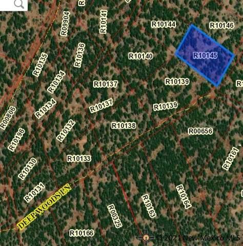 Lot 24 D Mcgaffey Pines, McGAFFEY, NM 87316 (MLS #20214751) :: The Bridges Team with Keller Williams Realty