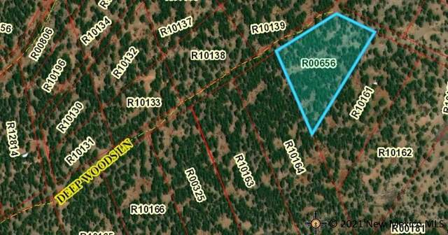 Lot 33A Mcgaffey Pines, McGAFFEY, NM 87316 (MLS #20214752) :: The Bridges Team with Keller Williams Realty