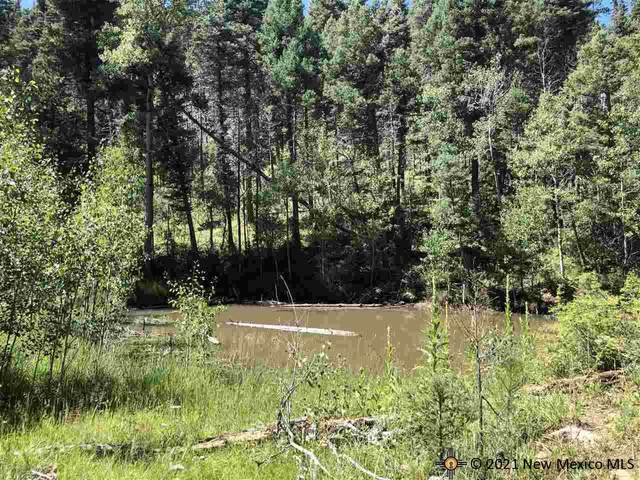 80 acres Trumbull Canyon, Guadalupita, NM 87732 (MLS #20214839) :: The Bridges Team with Keller Williams Realty