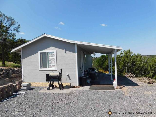 102 Pinion Heights, Quemado, NM 87829 (MLS #20214913) :: The Bridges Team with Keller Williams Realty