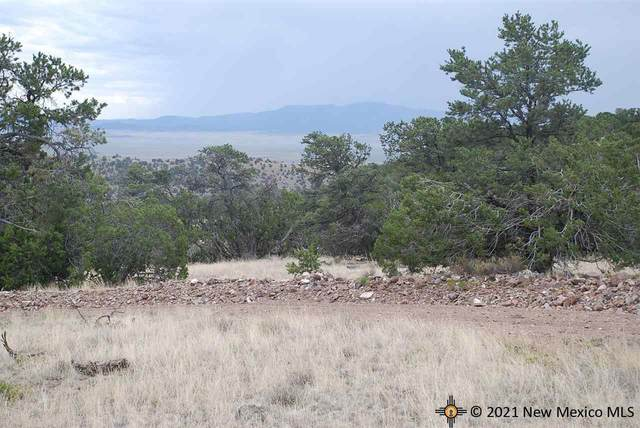 Lots 48, 49, 50 Highlands Trail, Datil, NM 87821 (MLS #20215015) :: The Bridges Team with Keller Williams Realty