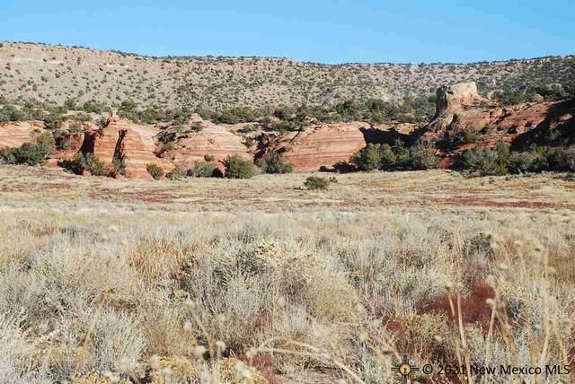 12 Chimney Rock Ranch, Prewitt, NM 87045 (MLS #20215024) :: The Bridges Team with Keller Williams Realty