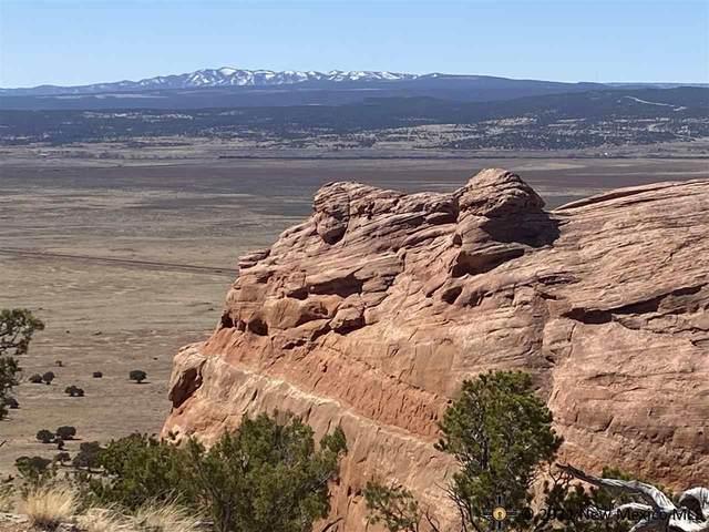 4 Eagle Rock Ranches, Prewitt, New Mexico, 87045, Prewitt, NM 88704 (MLS #20215027) :: The Bridges Team with Keller Williams Realty