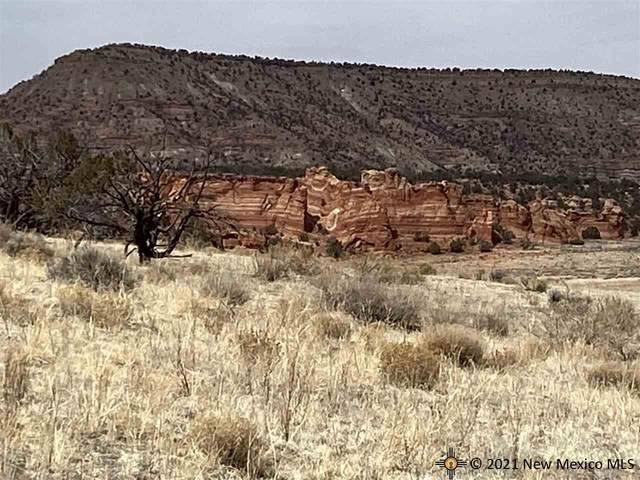 14 Red Rock Ranches, Prewitt, New Mexico, 87045, Prewitt, NM 87045 (MLS #20215030) :: The Bridges Team with Keller Williams Realty