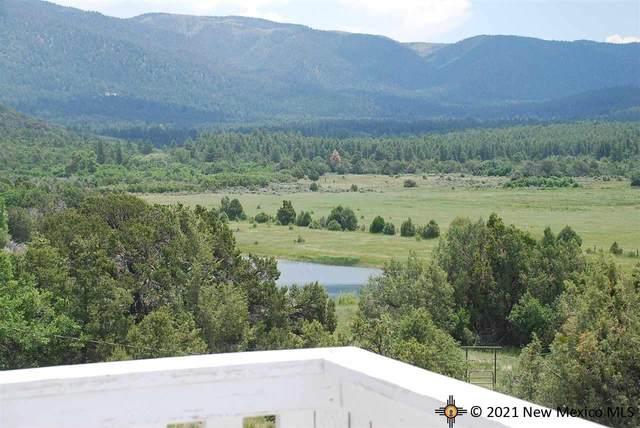 933 Bear Paw Road, REGINA, NM 87046 (MLS #20215039) :: The Bridges Team with Keller Williams Realty