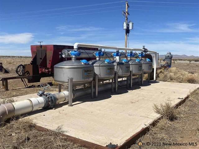 Separ Hay & Cattle Farm, Lordsburg, NM 88045 (MLS #20215040) :: The Bridges Team with Keller Williams Realty