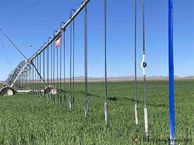 198 Ramos Road, Lordsburg, NM 88045 (MLS #20215050) :: The Bridges Team with Keller Williams Realty