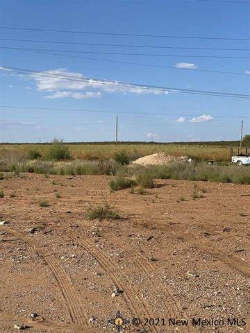 2018-4 Mission Ave, Carlsbad, NM 88220 (MLS #20215103) :: The Bridges Team with Keller Williams Realty