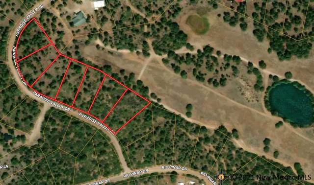 24 Paradise Valley Dr, Timberon, NM 88350 (MLS #20215138) :: The Bridges Team with Keller Williams Realty