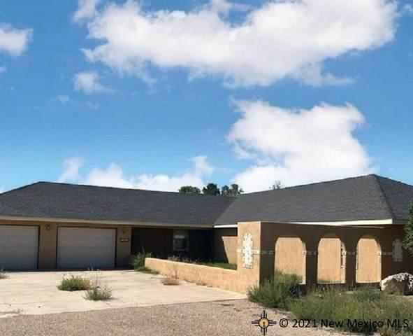 4205 Ferguson, Carlsbad, NM 88220 (MLS #20215179) :: Rafter Cross Realty