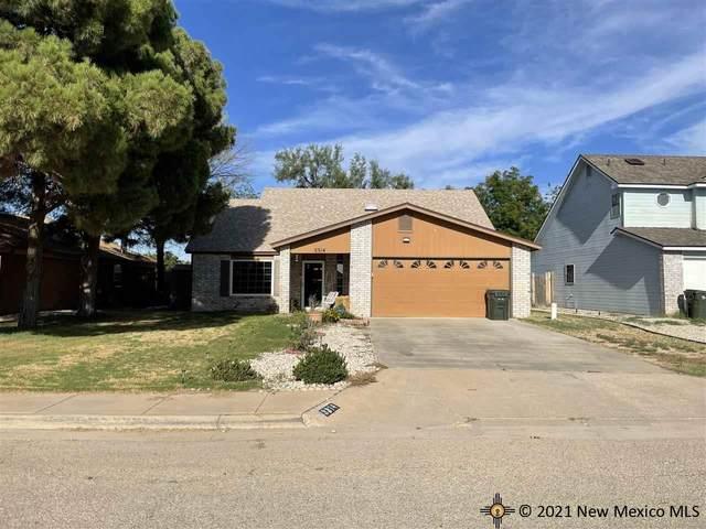 3314 Sunnyview Avenue, Carlsbad, NM 88220 (MLS #20215188) :: Rafter Cross Realty