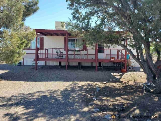 405 San Mateo, Elephant Butte, NM 87935 (MLS #20215191) :: The Bridges Team with Keller Williams Realty