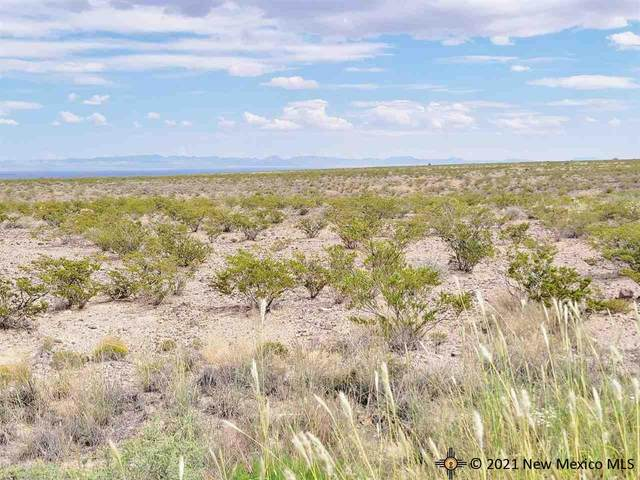 311 Champagne Hills Road, Elephant Butte, NM 87935 (MLS #20215195) :: The Bridges Team with Keller Williams Realty