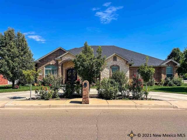 3801 Woodlark Rd., Clovis, NM 88101 (MLS #20215209) :: Rafter Cross Realty