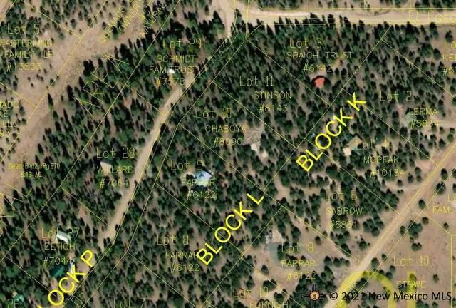 72 Elk View Circle, Quemado, NM 87829 (MLS #20215224) :: The Bridges Team with Keller Williams Realty