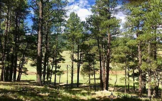 Lot 5 Pine Tree Road, Buena Vista, NM 87732 (MLS #20215296) :: The Bridges Team with Keller Williams Realty