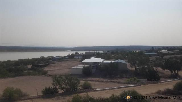302 Lions Beach Road, Elephant Butte, NM 87935 (MLS #20215301) :: The Bridges Team with Keller Williams Realty