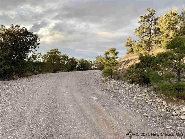 4 Fuerte, Timberon, NM 88350 (MLS #20215322) :: The Bridges Team with Keller Williams Realty
