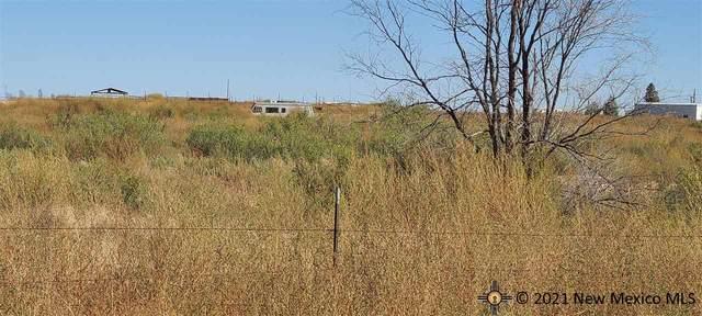TBD Knowles Rd, Hobbs, NM 88242 (MLS #20215556) :: Rafter Cross Realty