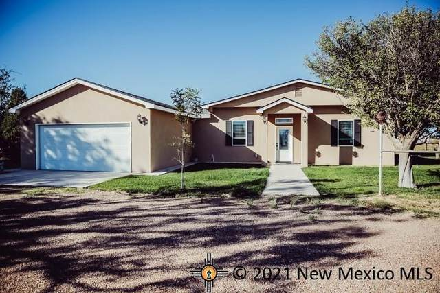270 Peaceful Valley Rd, Roswell, NM 88201 (MLS #20215602) :: The Bridges Team with Keller Williams Realty