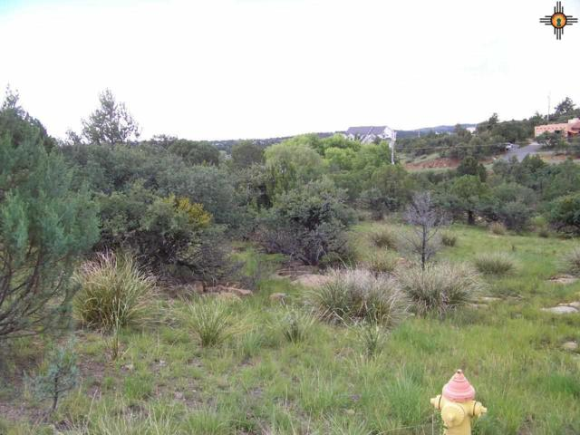 xxxx Rosewood Circle, Silver City, NM 88061 (MLS #20143739) :: Rafter Cross Realty