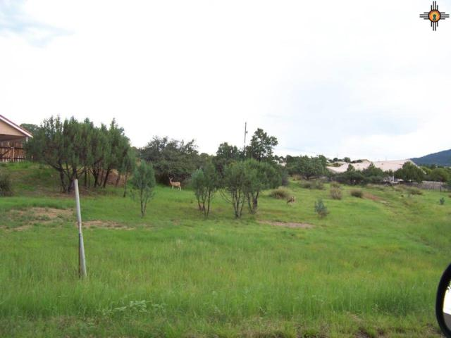 xx Rosewood Circle, Silver City, NM 88061 (MLS #20143740) :: Rafter Cross Realty