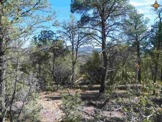 30 Rivers West Dr, Reserve, NM 87830 (MLS #20144413) :: Rafter Cross Realty