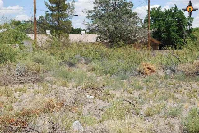 9th And Maple, Deming, NM 88030 (MLS #20152809) :: Rafter Cross Realty