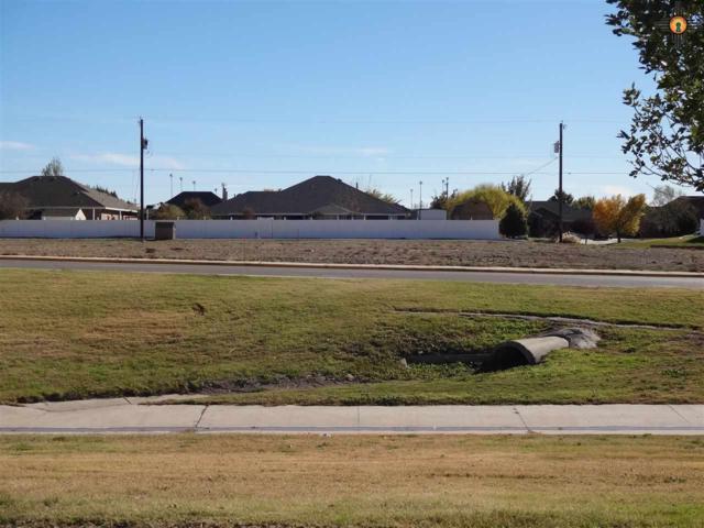 1529 Mahone Drive, Artesia, NM 88210 (MLS #20155230) :: Rafter Cross Realty