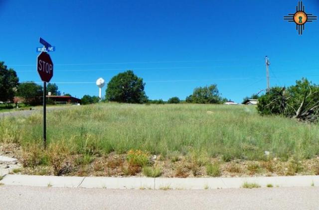 Juniper St, Reserve, NM 87830 (MLS #20160892) :: Rafter Cross Realty