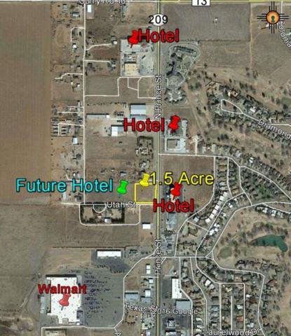 4200 N Prince Street, Clovis, NM 88101 (MLS #20160950) :: Rafter Cross Realty