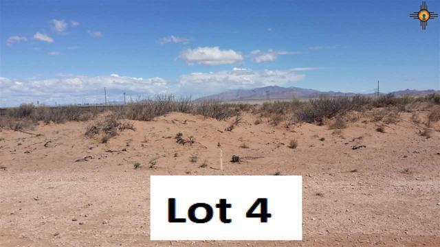 xxxx Silver Dollar Loop, Ne (Lot 4), Deming, NM 88030 (MLS #20161500) :: Rafter Cross Realty