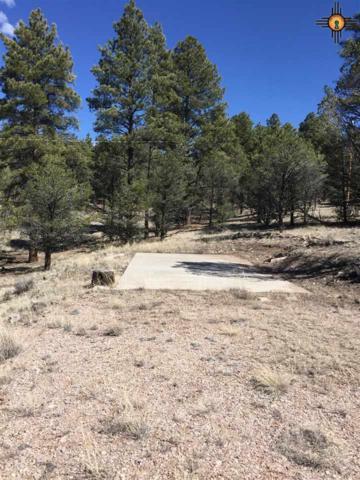 47 Elk View Circle, Quemado, NM 87829 (MLS #20170345) :: Rafter Cross Realty