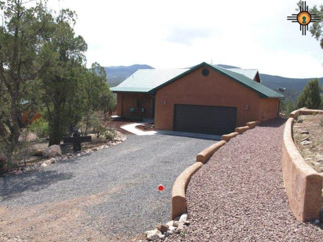 19 Dusty River Road, Reserve, NM 87830 (MLS #20172213) :: Rafter Cross Realty