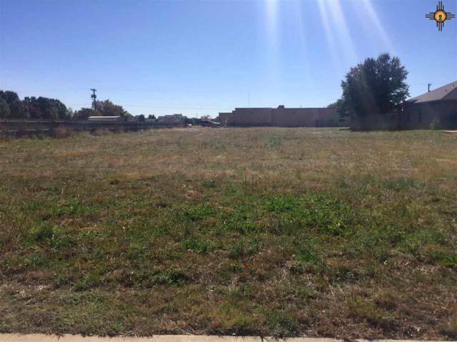 125 W Llano Estacado Blvd., Clovis, NM 88101 (MLS #20175386) :: Rafter Cross Realty