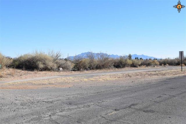 0000 Chaparral Blvd, Deming, NM 88030 (MLS #20176163) :: Rafter Cross Realty