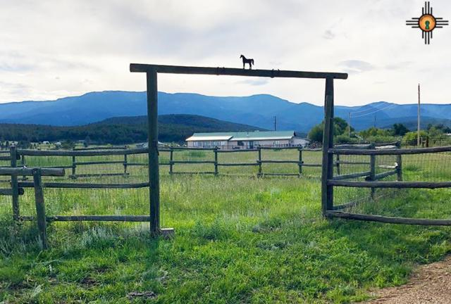 214 County Road A005, Mora, NM 87732 (MLS #20181806) :: Rafter Cross Realty