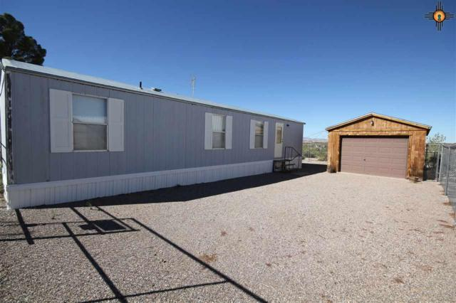 133 Camino Encantado, Elephant Butte, NM 87935 (MLS #20183698) :: Rafter Cross Realty