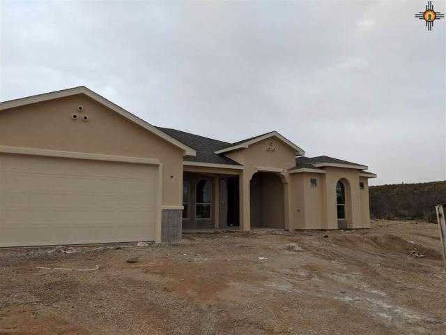 801 Miehls Dr., Carlsbad, NM 88220 (MLS #20184952) :: Rafter Cross Realty