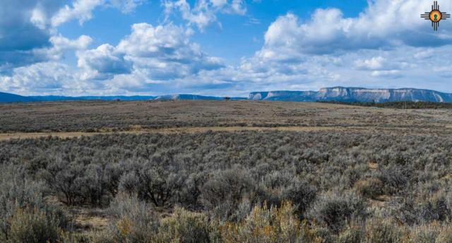 0 Pajarrito Rd, Tierra Amarilla, NM 87575 (MLS #20185643) :: Rafter Cross Realty