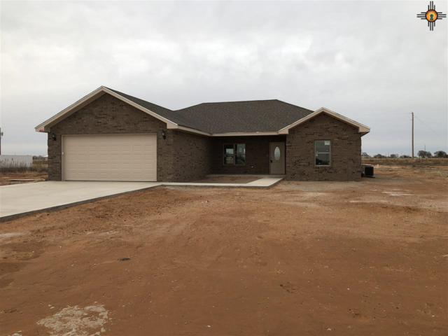 132 Crest Pointe Dr, Portales, NM 88130 (MLS #20190114) :: Rafter Cross Realty