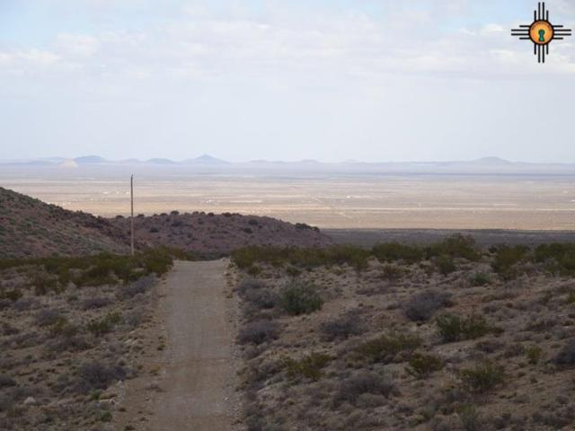 000 Pampas, Deming, NM 88030 (MLS #20190470) :: Rafter Cross Realty