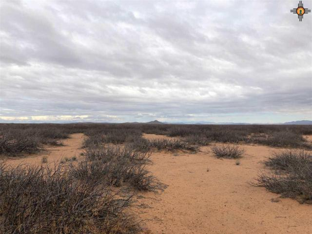 0000 Unknown Rd Nw, Deming, NM 88030 (MLS #20190494) :: Rafter Cross Realty