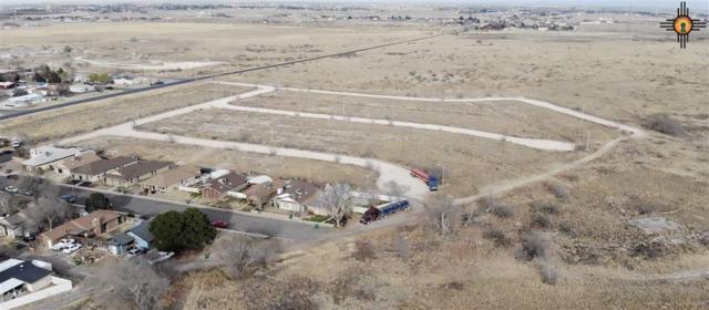 TBD College Lane, Hobbs, NM 88242 (MLS #20190718) :: Rafter Cross Realty